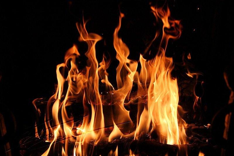 hacer fuego con leña de calidad